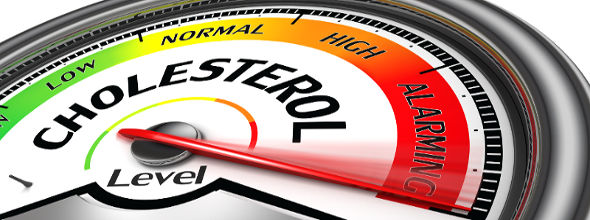 Does Fish Oil Lower Cholesterol