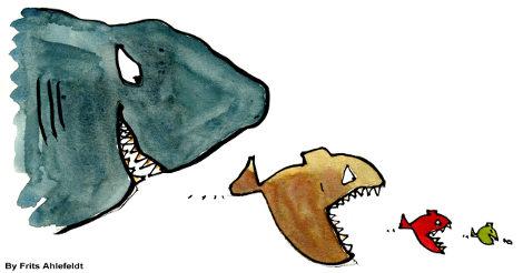 fishy food chains