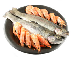 Why is fish healthy for you for Why fish is bad for you
